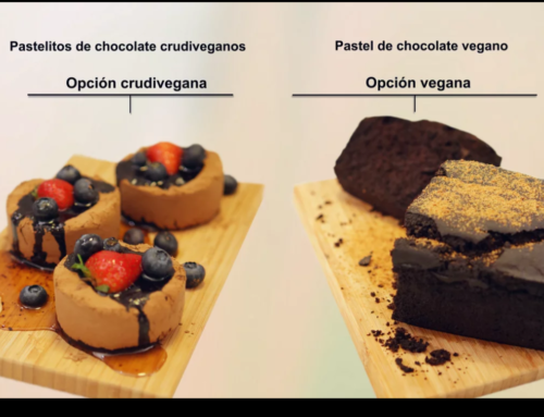 Pastelitos de chocolate crudiveganos vs vegano